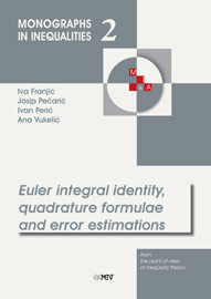 Euler integral identity, quadrature formulae and error estimations