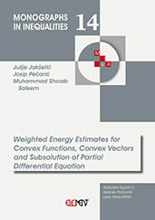 Weighted Energy Estimates for Convex Functions, Convex Vectors and Subsolution of Partial Differential Equation